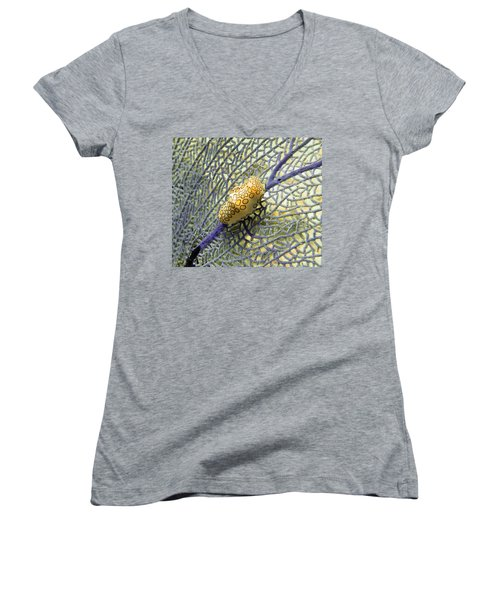 Flamingo Tongue Snail On Purple Fan Coral Women's V-Neck T-Shirt (Junior Cut) by Amy McDaniel