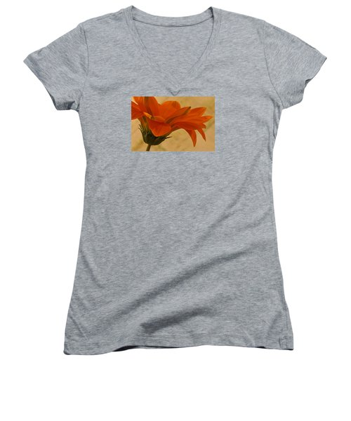 Flaunting Gazani Women's V-Neck T-Shirt (Junior Cut) by Sandra Foster