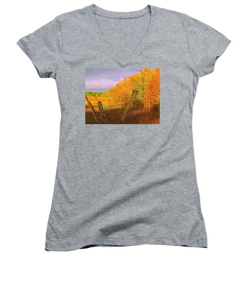Florida Wetlands  Women's V-Neck T-Shirt