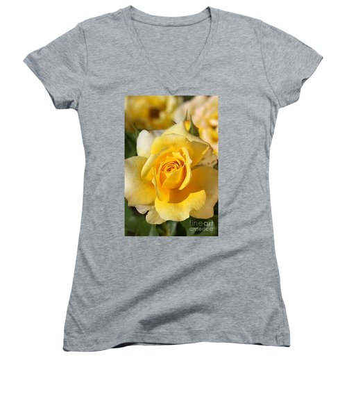 Flower-yellow Rose-delight Women's V-Neck T-Shirt (Junior Cut) by Joy Watson