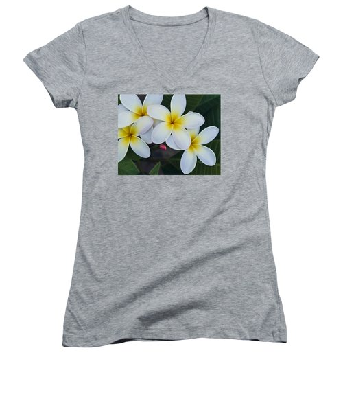Flowers And Their Bud Women's V-Neck T-Shirt