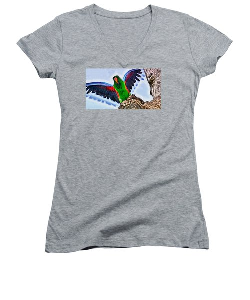 Fly And Shine Women's V-Neck T-Shirt