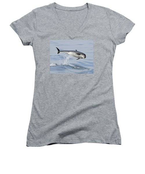 Flying Sideways Women's V-Neck T-Shirt (Junior Cut) by Shoal Hollingsworth