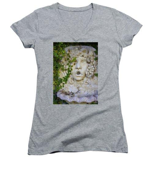 Forgotten Garden Women's V-Neck T-Shirt
