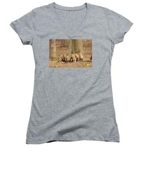 Fox Family Portrait Women's V-Neck T-Shirt