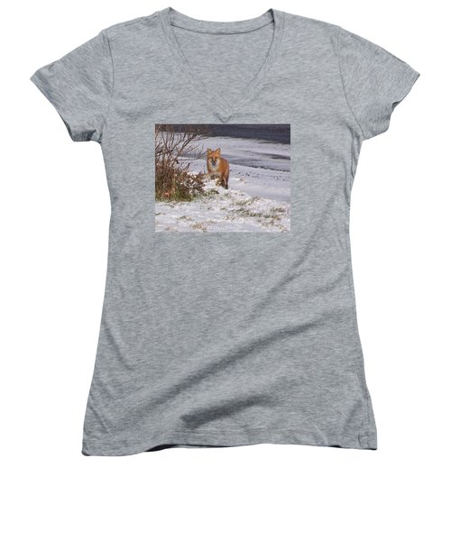 Fox In My Yard Women's V-Neck (Athletic Fit)