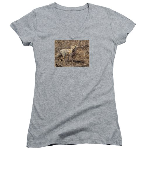 Women's V-Neck T-Shirt (Junior Cut) featuring the photograph Foxy In Disguise by Yeates Photography