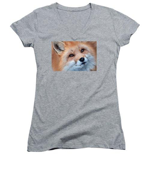 Foxy Lady Women's V-Neck T-Shirt