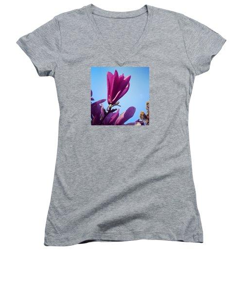 Fragrant Silence Women's V-Neck T-Shirt (Junior Cut) by Kerri Farley
