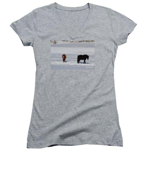 Free Spirits Women's V-Neck T-Shirt (Junior Cut) by Fiona Kennard