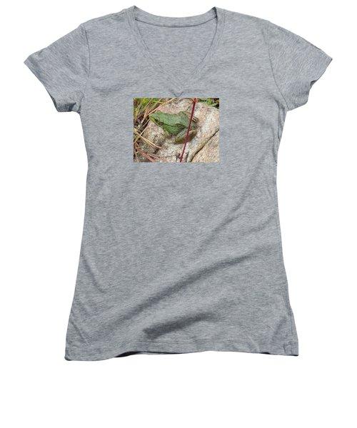 Frog Women's V-Neck T-Shirt (Junior Cut) by Robert Nickologianis