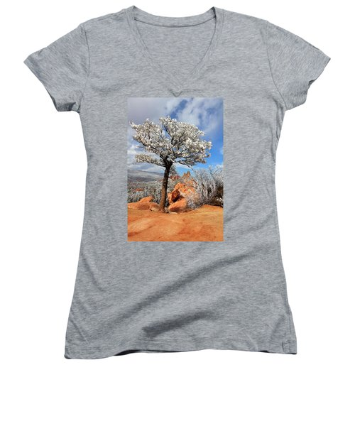 Frosted Wonderland 3 Women's V-Neck T-Shirt