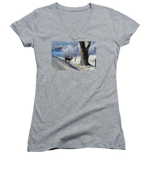 Frosty Cades Cove II Women's V-Neck T-Shirt