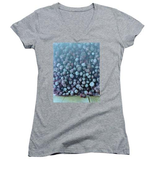 Frozen Blueberries Women's V-Neck