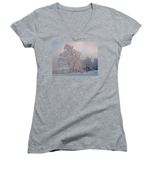 Women's V-Neck T-Shirt (Junior Cut) featuring the photograph Frozen Moment by Jeremy Rhoades