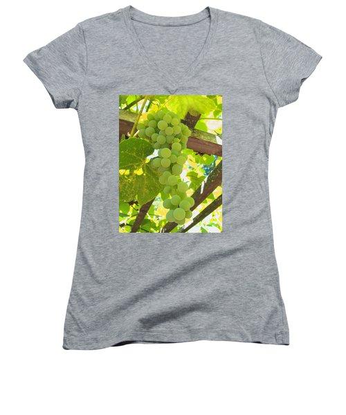 Fruit Of The Vine - Garden Art For The Kitchen Women's V-Neck T-Shirt (Junior Cut) by Brooks Garten Hauschild