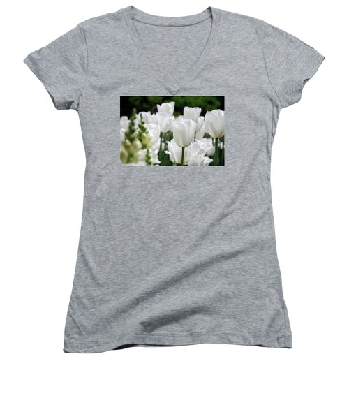 Garden Beauty Women's V-Neck T-Shirt (Junior Cut) by Jennifer Ancker