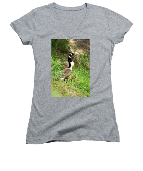Geese And Gosling Women's V-Neck (Athletic Fit)