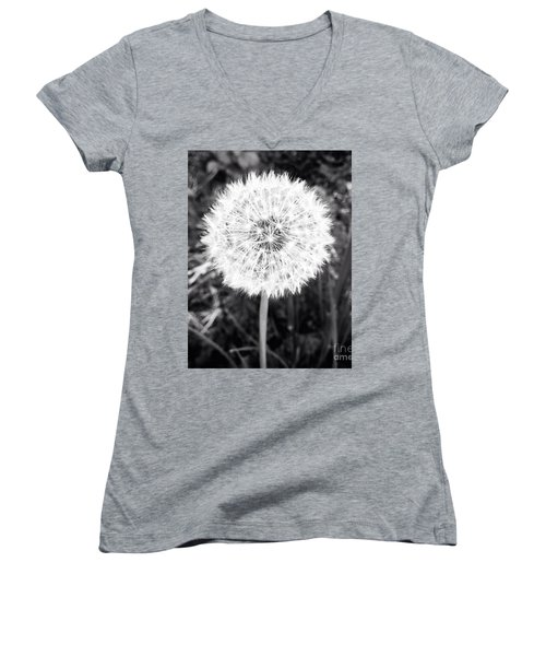Women's V-Neck T-Shirt (Junior Cut) featuring the photograph Geodesicate by Vanessa Palomino