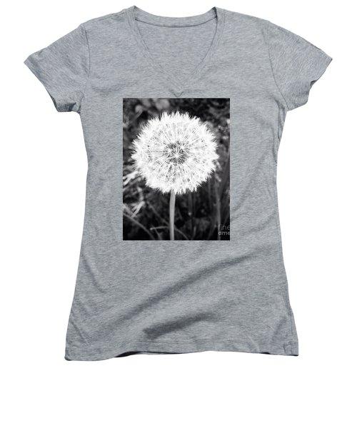 Geodesicate Women's V-Neck T-Shirt (Junior Cut) by Vanessa Palomino