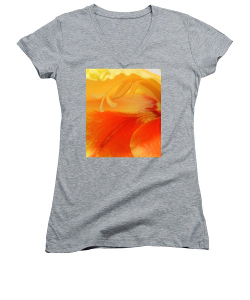 Gladiola Hello Women's V-Neck T-Shirt (Junior Cut) by Deborah  Crew-Johnson