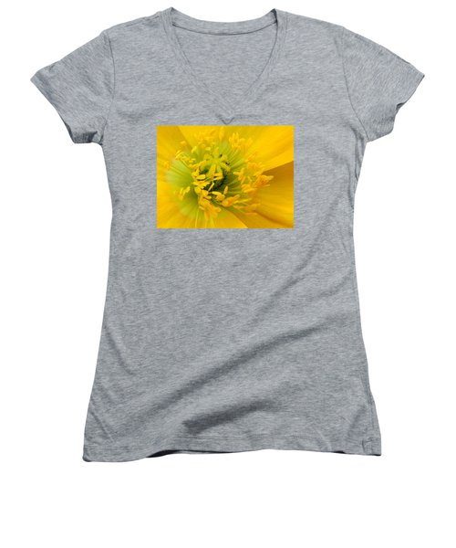 Women's V-Neck T-Shirt (Junior Cut) featuring the photograph Glory Of Nature by Deb Halloran