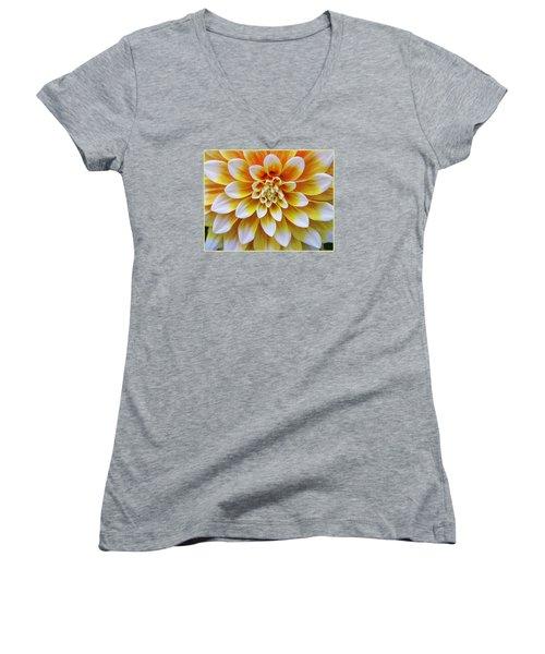 Glowing Dahlia Women's V-Neck T-Shirt (Junior Cut) by Dora Sofia Caputo Photographic Art and Design