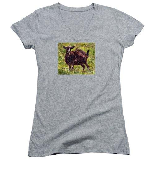 Goat Piggybackers Women's V-Neck T-Shirt