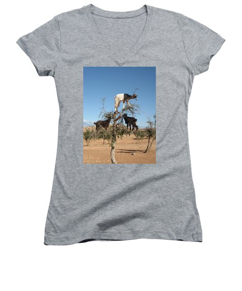 Goats In A Tree Women's V-Neck T-Shirt