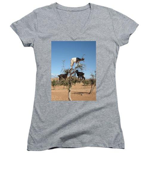 Goats In A Tree Women's V-Neck T-Shirt