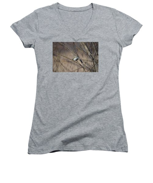 Golden-crowned Kinglet Women's V-Neck T-Shirt (Junior Cut) by James Petersen