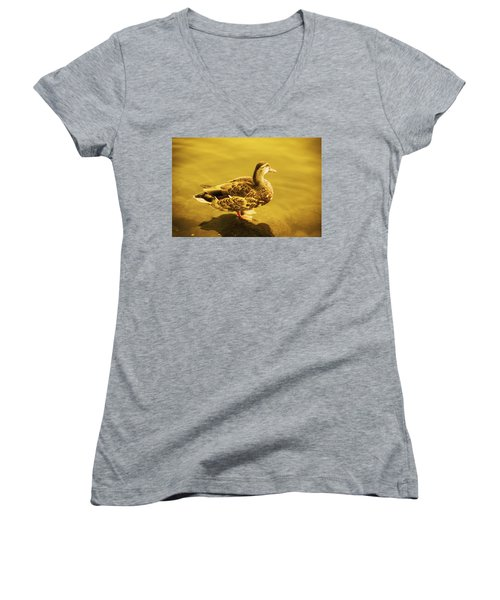 Women's V-Neck T-Shirt (Junior Cut) featuring the photograph Golden Duck by Nicola Nobile