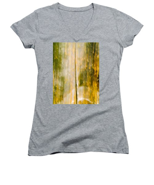 Golden Falls  Women's V-Neck T-Shirt (Junior Cut) by Bill Gallagher