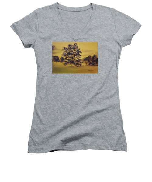 Golden Landscape Women's V-Neck T-Shirt (Junior Cut) by Judith Rhue