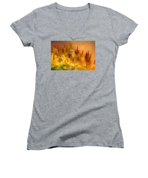 Golden Palette Women's V-Neck