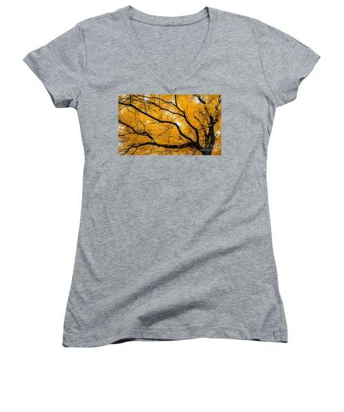 Golden Tree Women's V-Neck