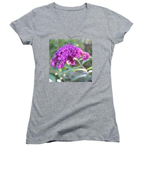 Good Morning Purple Butterfly Bush Women's V-Neck T-Shirt