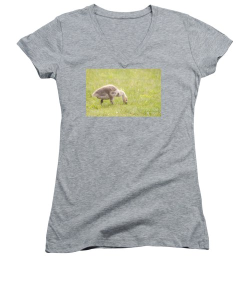Women's V-Neck T-Shirt (Junior Cut) featuring the photograph Gosling by Jeannette Hunt