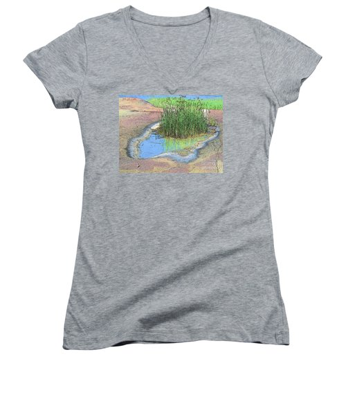 Grass Growing On Rocks Women's V-Neck T-Shirt (Junior Cut)