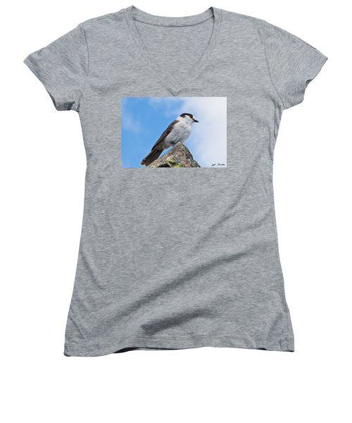 Gray Jay With Blue Sky Background Women's V-Neck (Athletic Fit)
