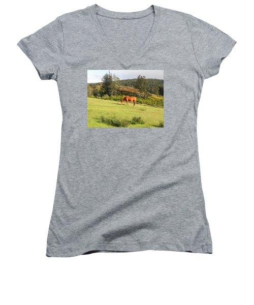 Women's V-Neck T-Shirt (Junior Cut) featuring the photograph Grazing by Cheryl Hoyle