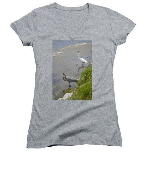 Great Blue And White Egrets Women's V-Neck T-Shirt (Junior Cut) by Judith Morris