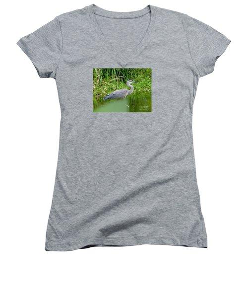 Great Blue Heron  Women's V-Neck T-Shirt (Junior Cut) by Susan Garren