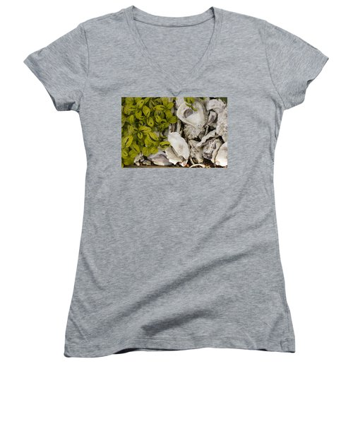 Green Abalone Women's V-Neck