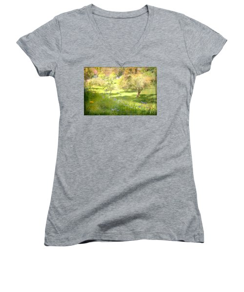 Women's V-Neck T-Shirt (Junior Cut) featuring the photograph Green Spring Meadow With Flowers by Brooke T Ryan