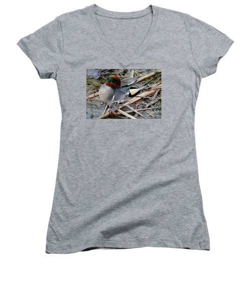 Women's V-Neck T-Shirt (Junior Cut) featuring the photograph Green-winged Teal by Debra Martz