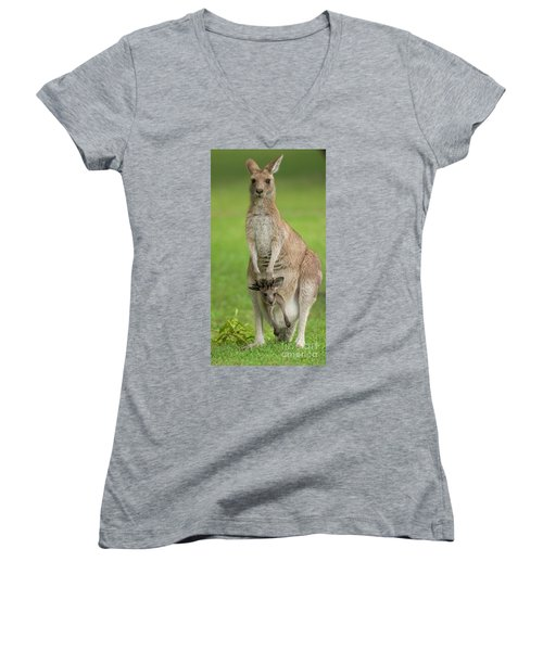 Grey Kangaroo And Joey  Women's V-Neck (Athletic Fit)