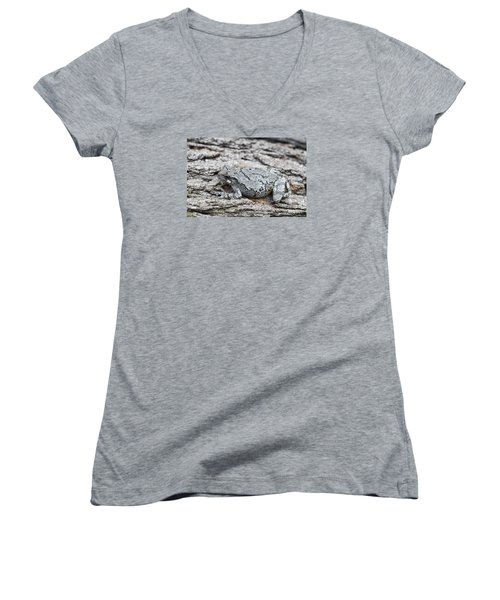 Women's V-Neck T-Shirt (Junior Cut) featuring the photograph Cope's Gray Tree Frog by Judy Whitton