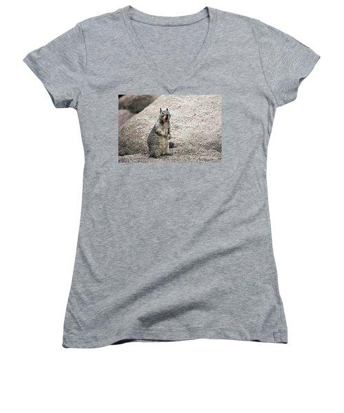 Ground Squirrel Raising A Ruckus Women's V-Neck T-Shirt (Junior Cut)