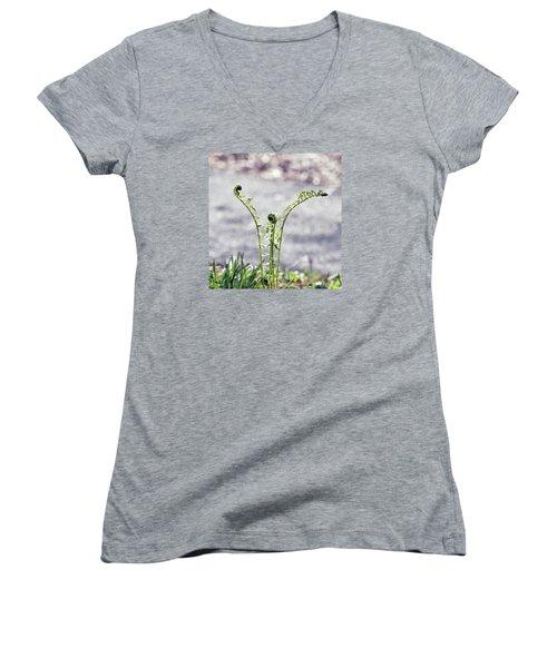 Women's V-Neck T-Shirt (Junior Cut) featuring the photograph Growing  by Kerri Farley